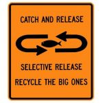 """Why """"Catch & Release"""" Is The Solid Fishing Practice"""